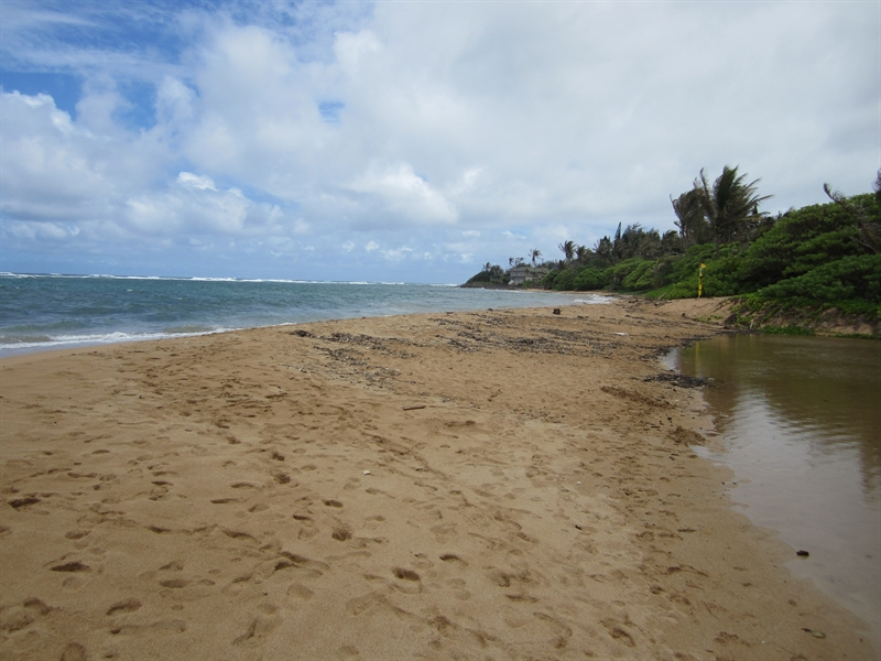 South Aliomanu Beach Looking South