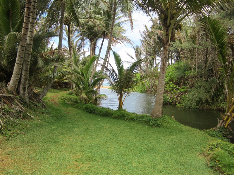 South Aliomanu Beach River